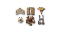 Collar and Rank Insignia